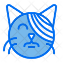 Cat Treatment Bandage Cat Icon
