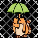 Cat With Umbrella Icon
