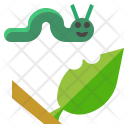 Caterpillar Worm Insect Icon