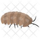 Caterpillar Insect Animal Icon