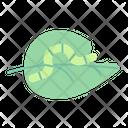 Caterpillar Leaf Pest Icon