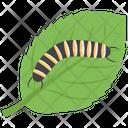 Plant Caterpillar Caterpillar Insect Icon