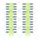 Caterpillar Insect Bug Icon