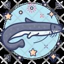 Catfish Fish Barbels Icon
