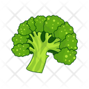 Caulitflower Vegetables Cabbage Icon