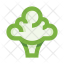 Cauliflower Broccoli Icon