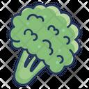 Cauliflower Fruit Vegetable Icon