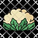 Cauliflower Icon