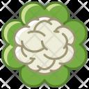 Cauliflower Vegetable Food Icon