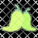 Cayenne Pepper Icon