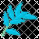 Cebu Pothos Icon