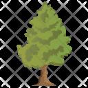 Cedar Wood Agriculture Icon