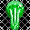 Celery Vegetable Organic Icon