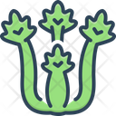 Celery Parsley Bunch Icon