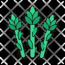 Celery Fresh Vegetables Icon