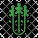 Celery Health Vegetarian Icon