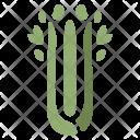 Celery Vegetable Healthy Icon