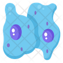 Cell Cancer Tumor Icon