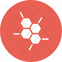 Cell Structure Biology Icon