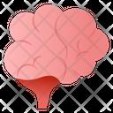 Cerebellum Icon