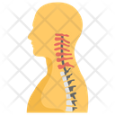 Cervical Spine Icon