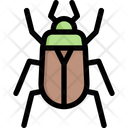 Chafer Icon