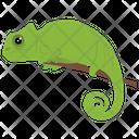 Chameleon Reptile Animal Icon