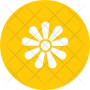Chamomile Icon