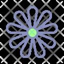 Chamomile Spring Blossom Icon
