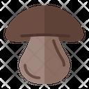 Champignon Fungi Mushroom Icon