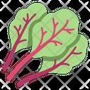 Chard Icon