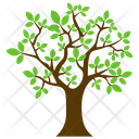 Charter Oak Feathery Icon