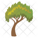 Charter Oak Tree Icon