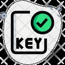 Check Key File Icon
