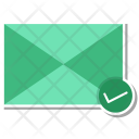 Mail Check Letter Icon