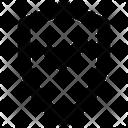 Check Shield Ui Icon