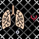Stethoscope Checkup Liver Icon