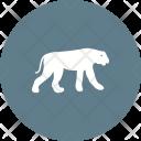 Cheetah Animal Wildlife Icon