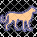 Cheetah Icon