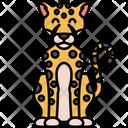 Cheetah Leoprd Animal Icon