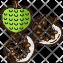 Cherimoya Icon