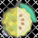 Cherimoya Custard Apple Icon