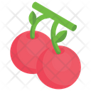 Cherries Cherry Fruit Berries Icon