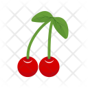 Cherry Fruit Sweet Icon