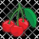 Cherry Fruit Fresh Icon