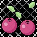 Cherry Berry Fruit Icon