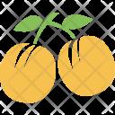 Fruits Cherry Wild Icon