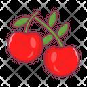 Cherry Berries Fruit Icon