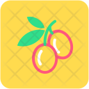 Cherry Fruit Healthy Icon