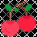 Cherry Fruits Food Icon